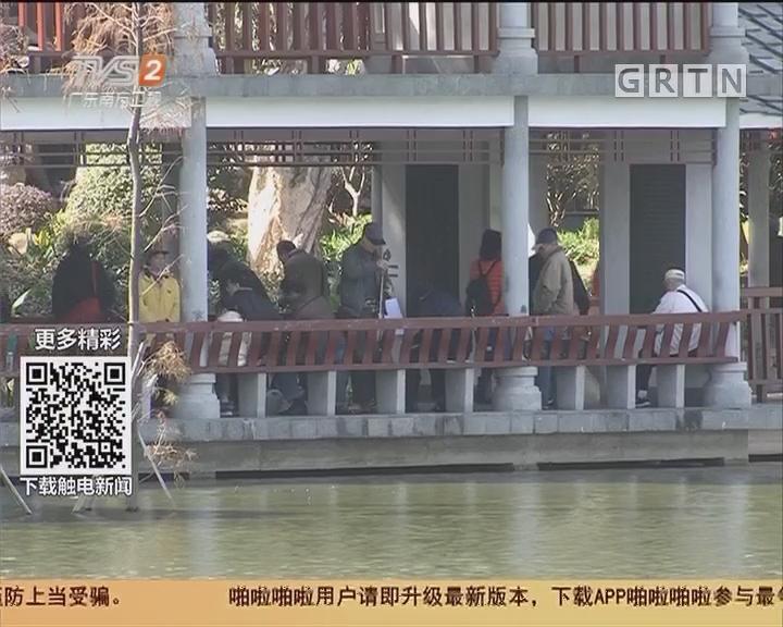 广州:流花公园绿岛西餐厅 本月底关停