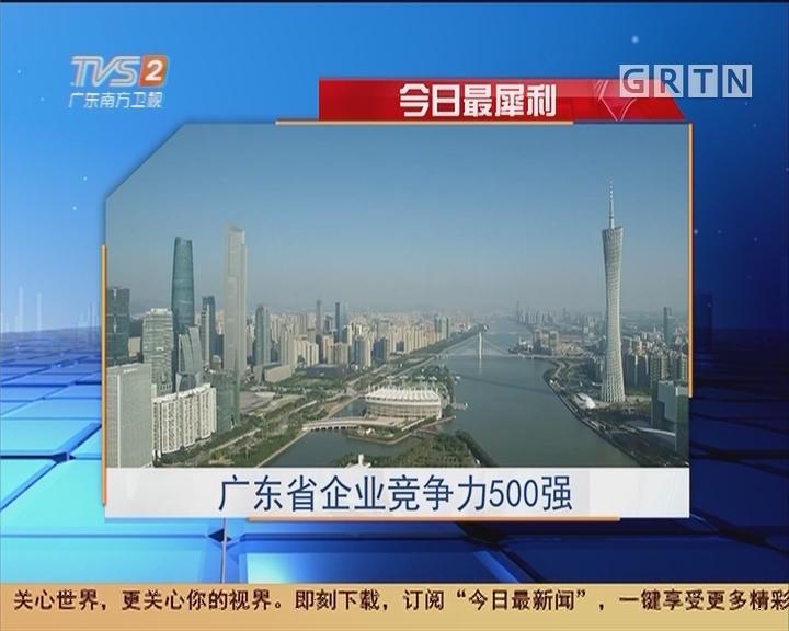 今日最犀利:广东省企业竞争力500强