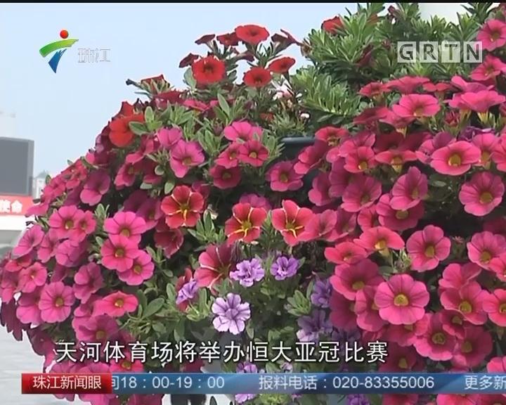 广州天河花市年廿九休市一天