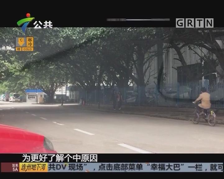 惠州:遭遇小车撞击 行人卷入车底