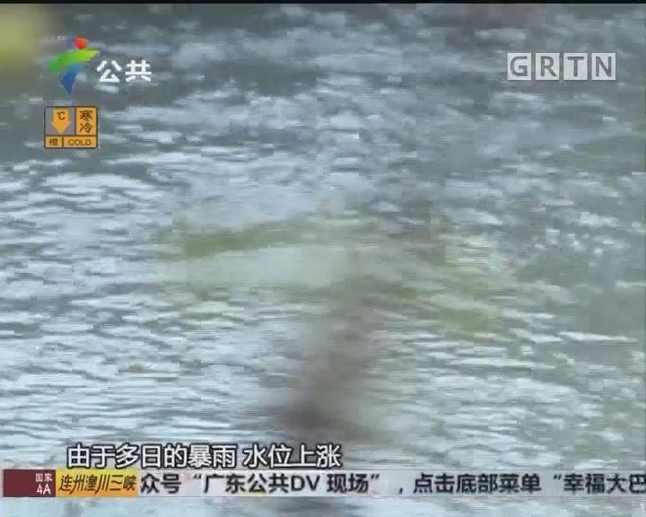 清远:上学途中遇洪水 7岁男童被冲走