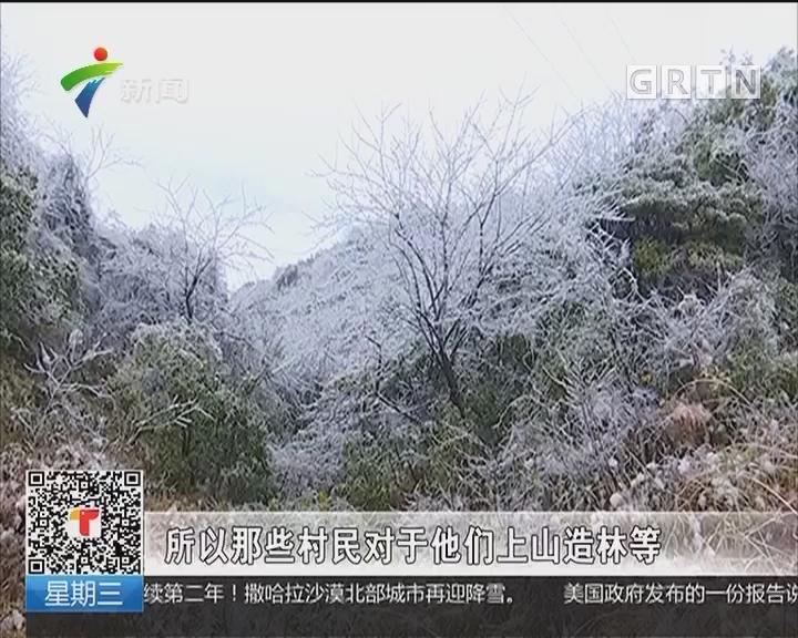 肇庆怀集:洽水镇冰雪美景引人醉