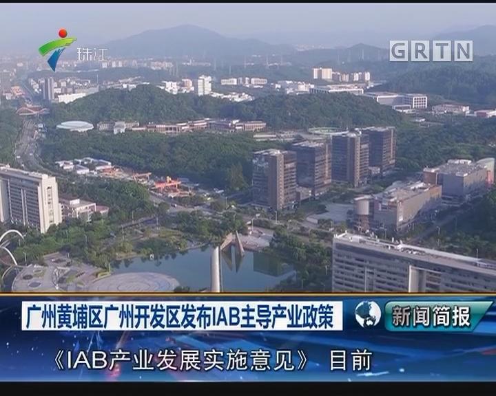 广州黄埔区广州开发区发布IAB主导产业政策