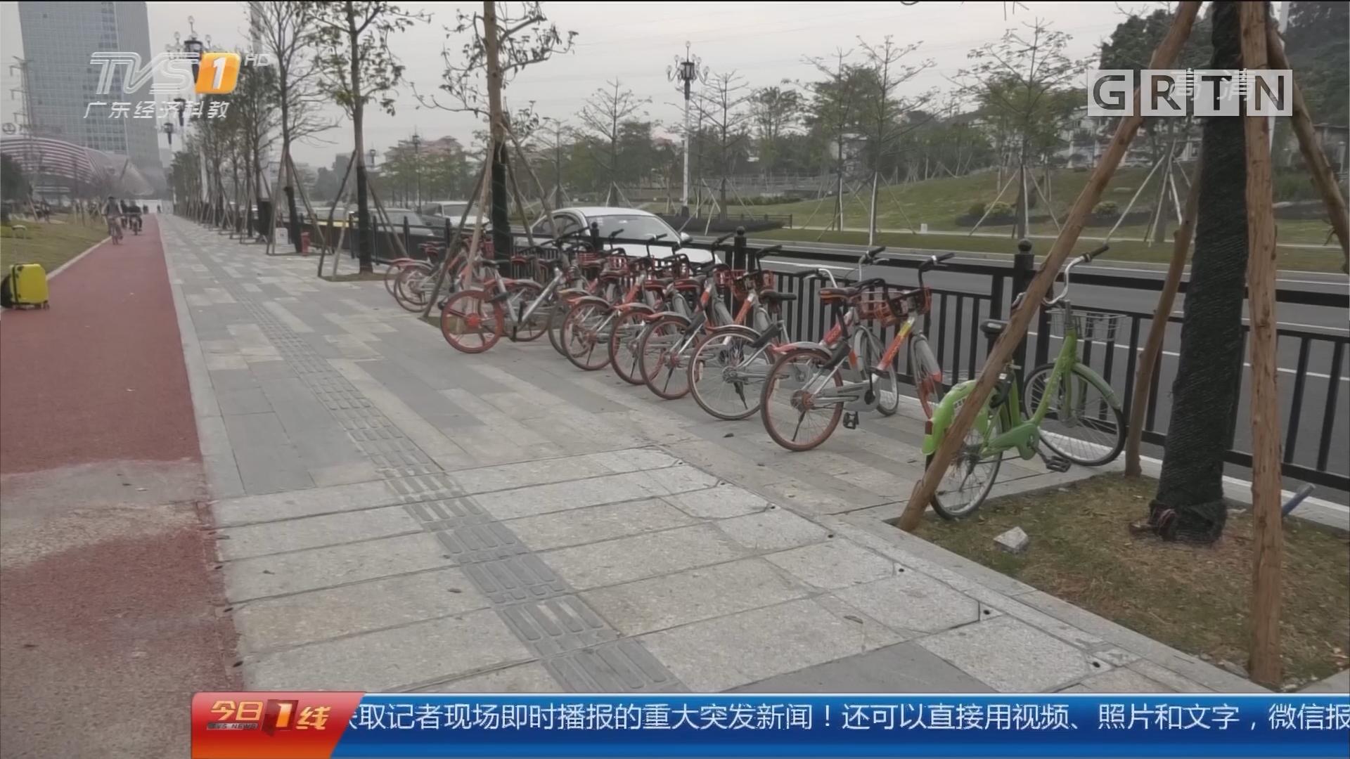 广州:脾摘除肋骨断 共享单车惹的祸?