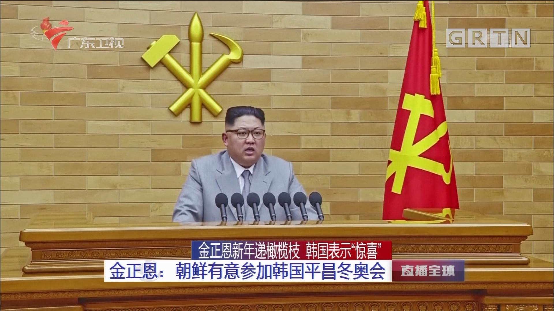 金正恩:朝鲜有意参加韩国平昌冬奥会