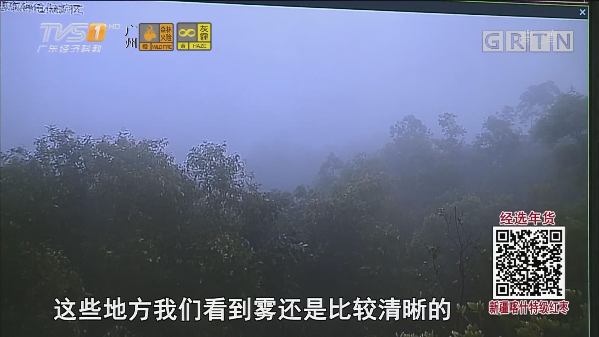 广州今年首次遭遇 PM2.5重度污染