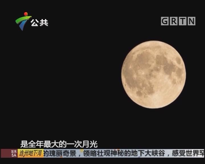 """""""超级月亮""""来了 今晚广州就可观赏到"""