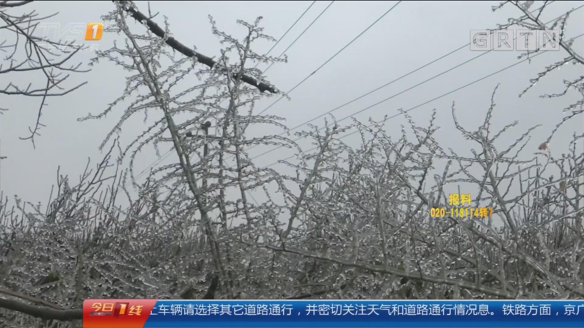 清远连州:寒潮来袭 当地各村镇暂用电畅通