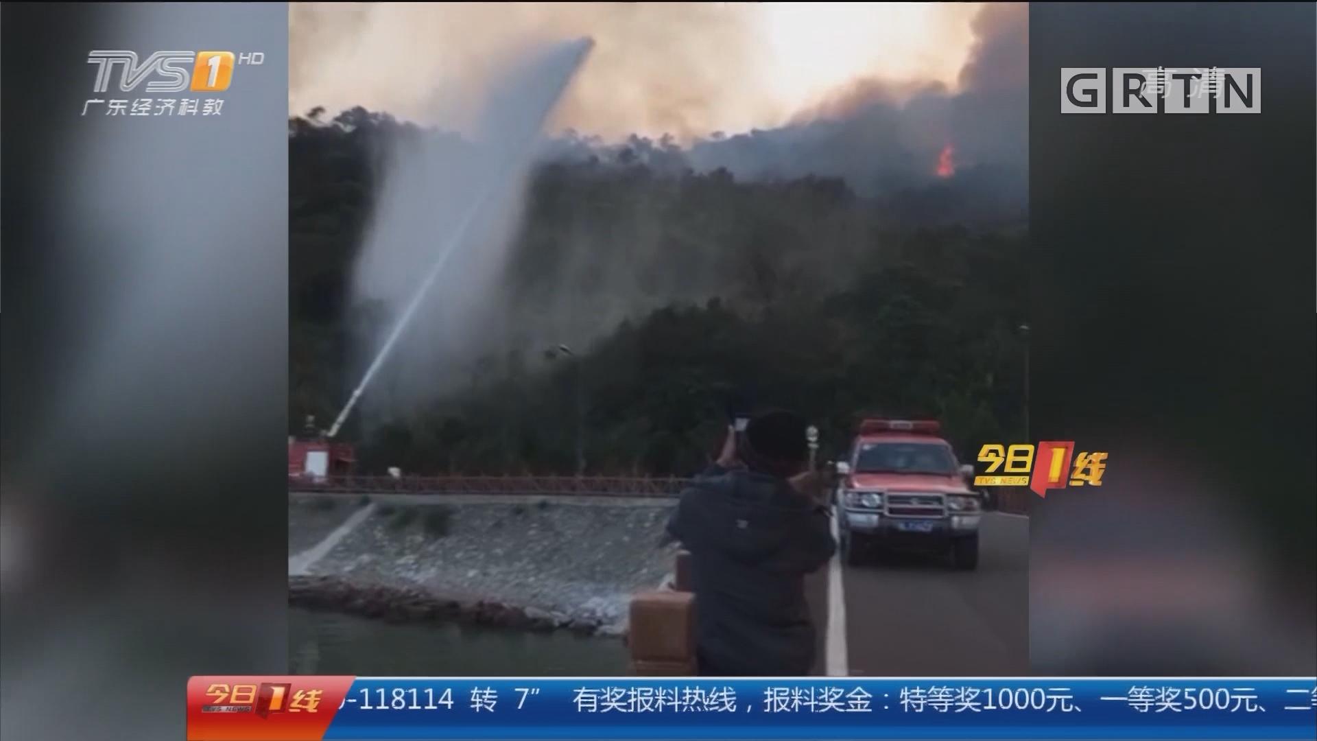 惠州大亚湾:山火烧足十小时 消防紧急灭火