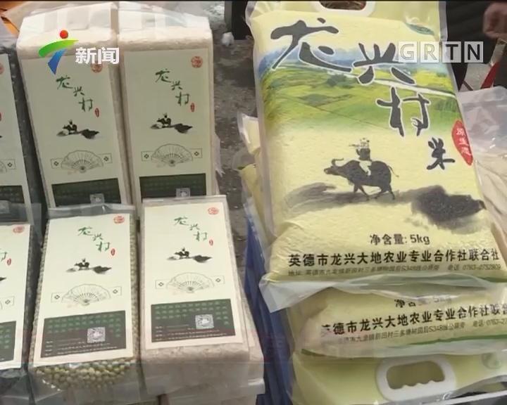 英德九龙(首届)旅游文化美食节开幕