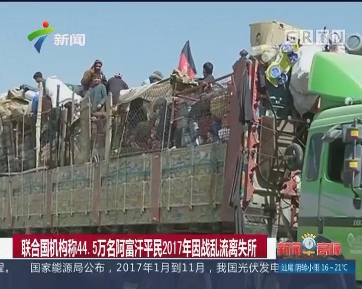 联合国机构称44.5万名阿富汗平民2017年因战乱流离失所