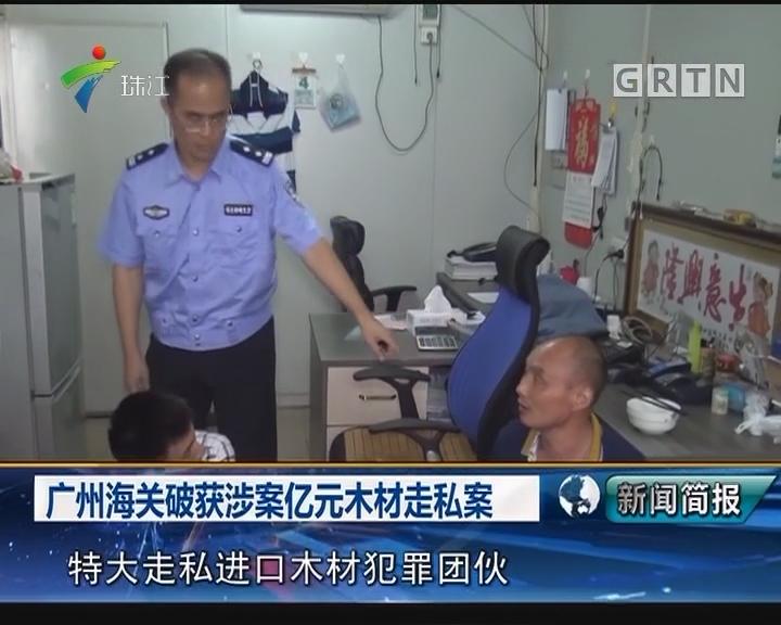 广州海关破获涉案亿元木材走私案