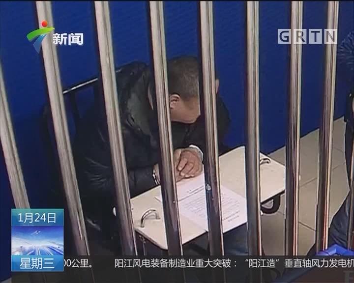 深圳:结伙飞车抢狗 掳走万元名犬