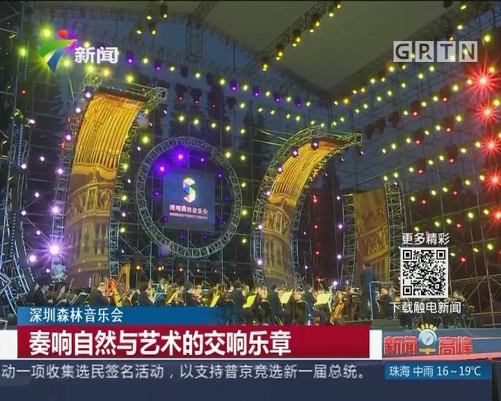 深圳森林音乐会:奏响自然与艺术的交响乐章