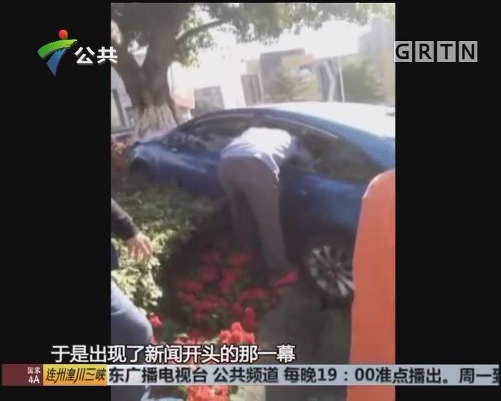 顺德:小车失控铲上花基 男子狂砸车窗