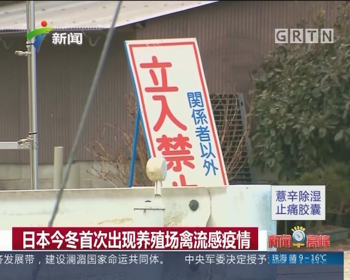 日本今冬首次出现养殖场禽流感疫情