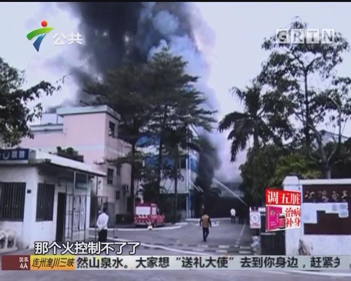顺德:电器厂房起火 幸无人员伤亡
