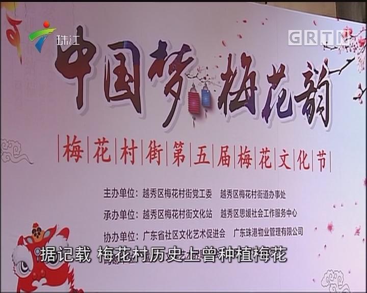 广州梅花村:今天花开早 城里看梅花