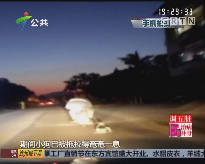 """街坊报料:男子骑摩托""""遛狗"""" 强行拖拉血流不止"""