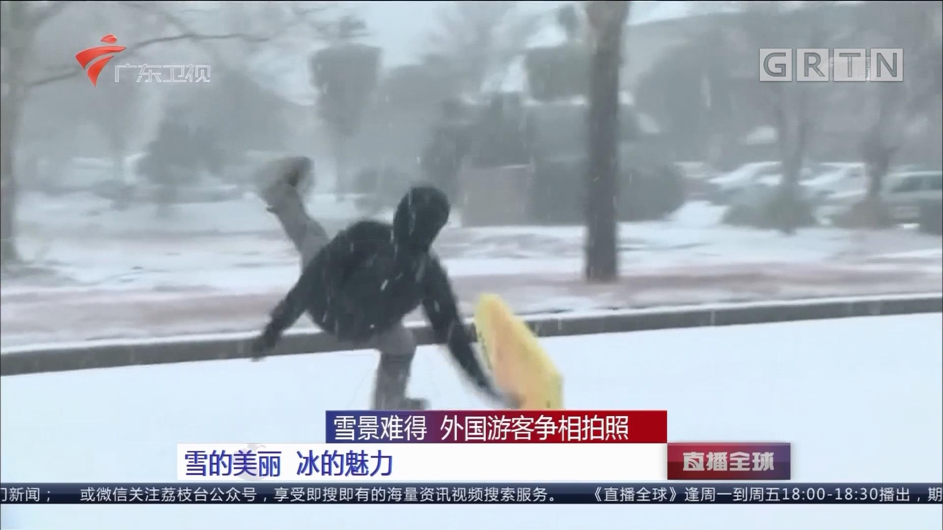 雪景难得 外国游客争相拍照:雪的美丽 冰的魅力