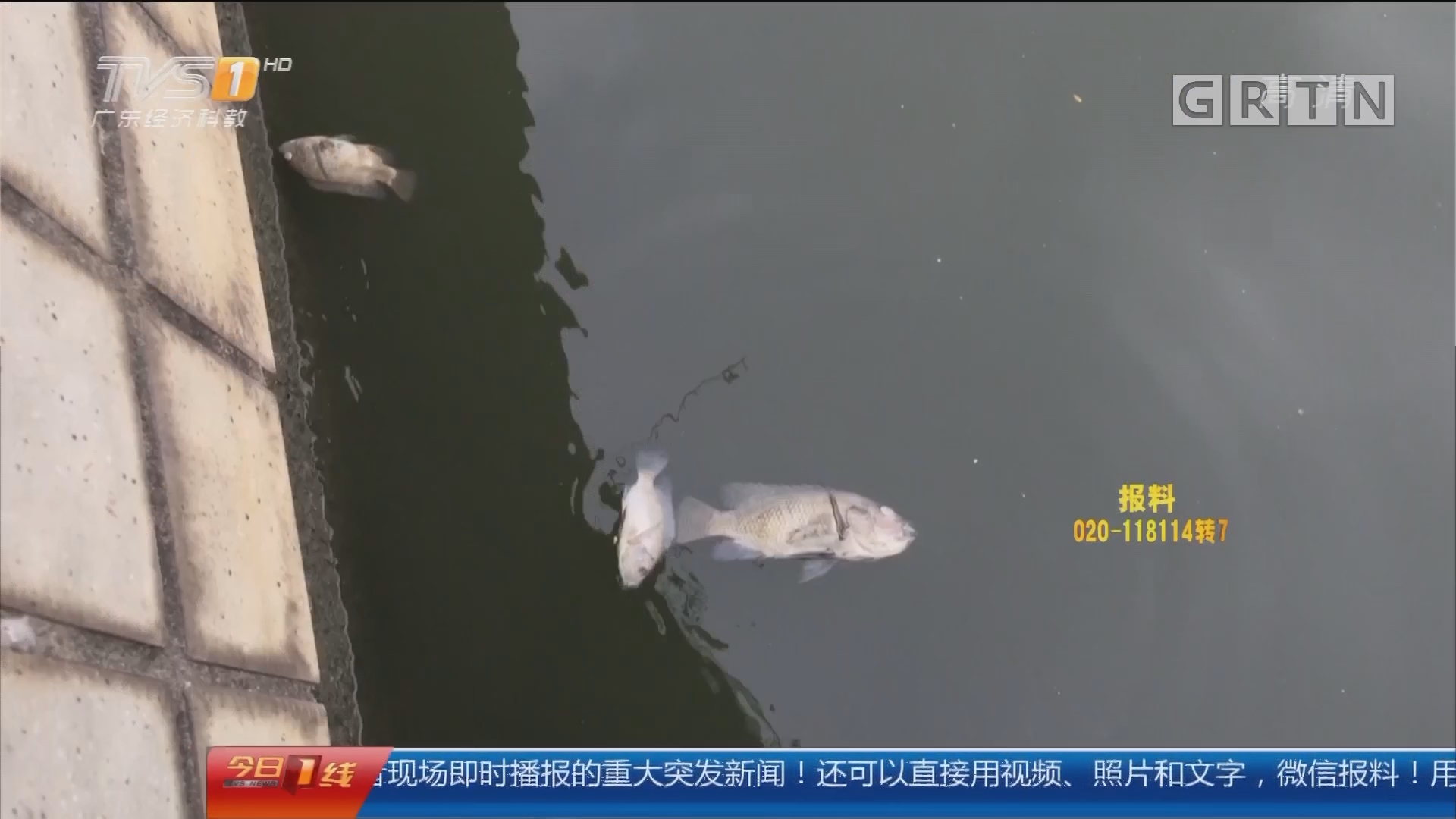 中山 街坊:河水前一天曾现异常