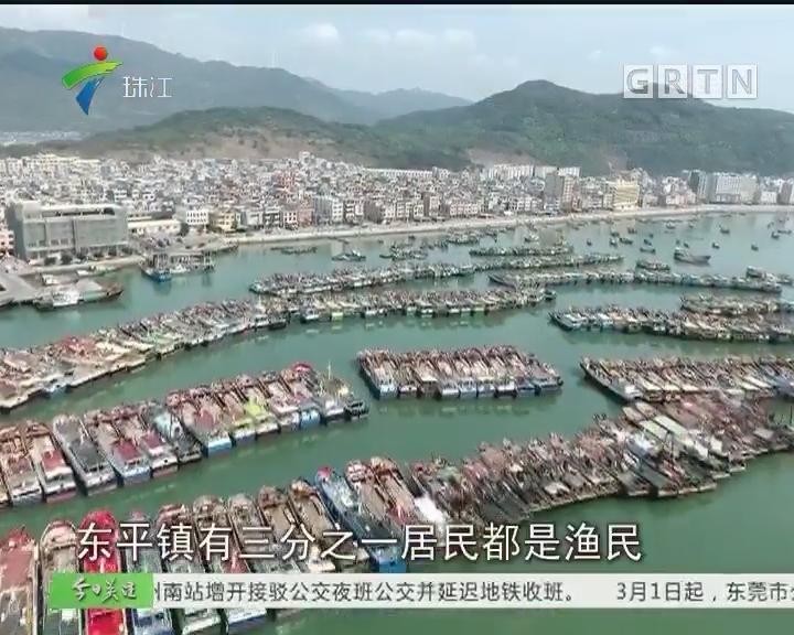 年的味道策划:浪映岸上红 阳东渔民年味浓