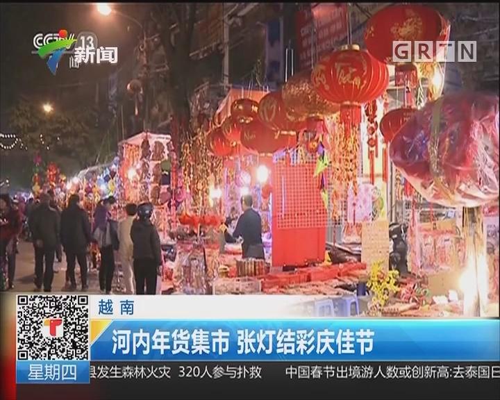 越南:河内年货集市 张灯结彩庆佳节