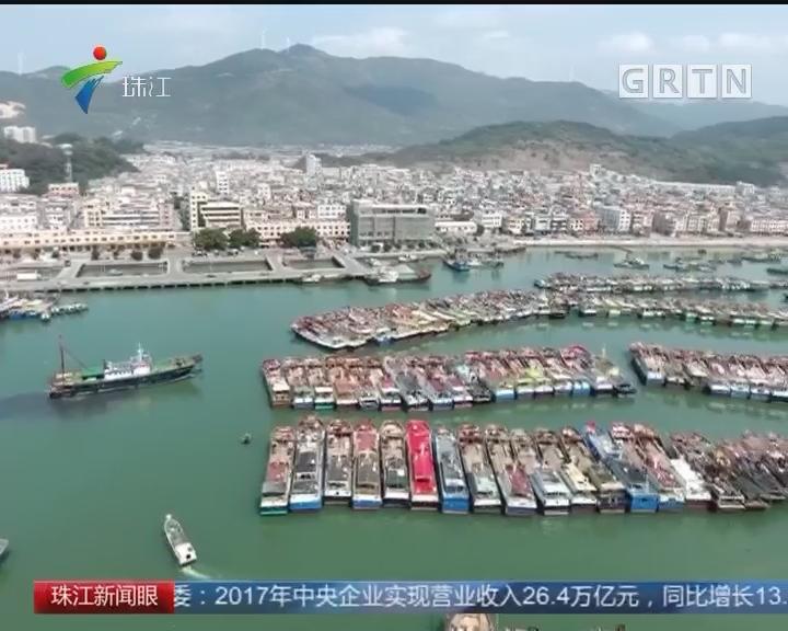 《年的味道》浪映岸上红 阳东渔民年味浓