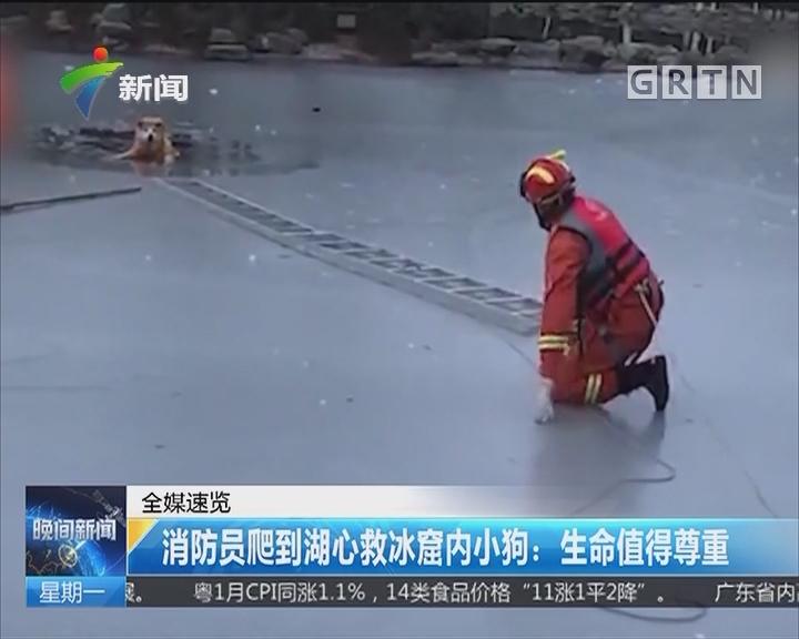消防员爬到湖心救冰窟内小狗:生命值得尊重
