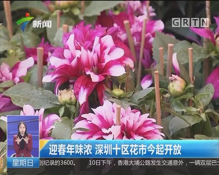 迎春年味浓 深圳十区花市今起开放