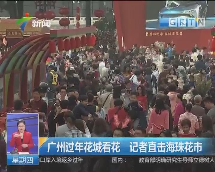 广州过年花城看花 记者直击海珠花市