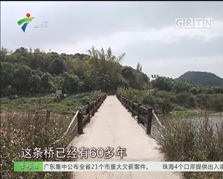 高州:村民苦盼危桥改造 镇政府立项跟进