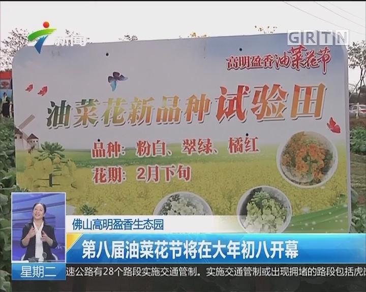 第八届油菜花节将在大年初八开幕