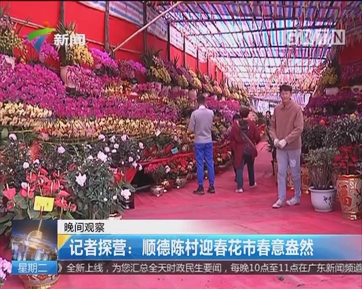 记者探营:顺德陈村迎春花市春意盎然
