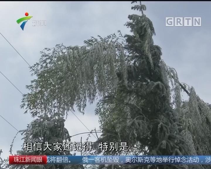 初一初二广州最高26度! 过个暖年