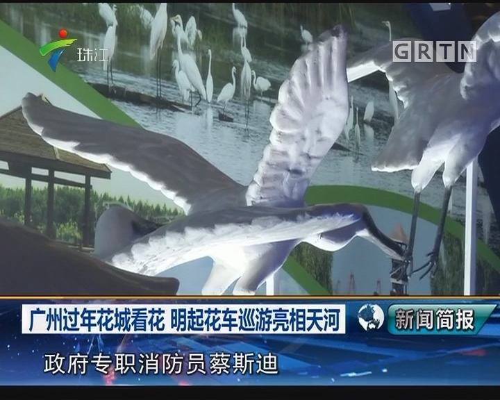 广州过年花城看花 明起花车巡游亮相天河