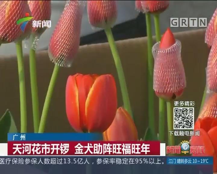 广州:天河花市开锣 金犬助阵旺福旺年
