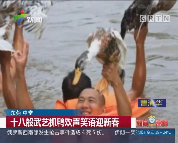 东莞 中堂:十八般武艺抓鸭欢声笑语迎新春