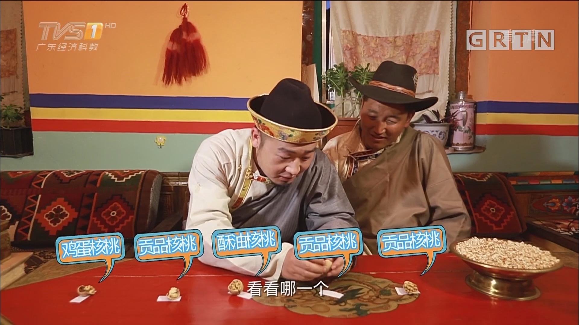 [HD][2018-02-09]一起旅游吧:藏游心声——藏源山南