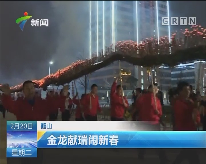 鹤山:金龙献瑞闹新春