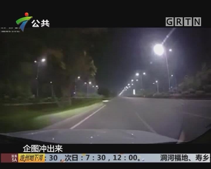 街坊报料:路遇男子突然靠近 幸及时躲避