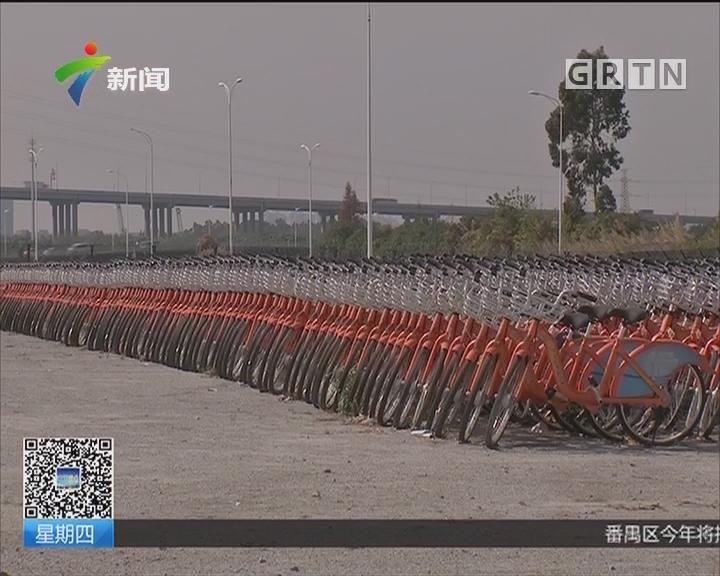 """广州小洲村:共享单车""""坟场""""多为倒闭企业车辆"""