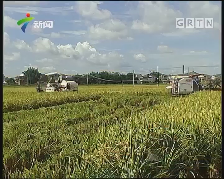 广东:调整农业产业结构 做好承包土地确权
