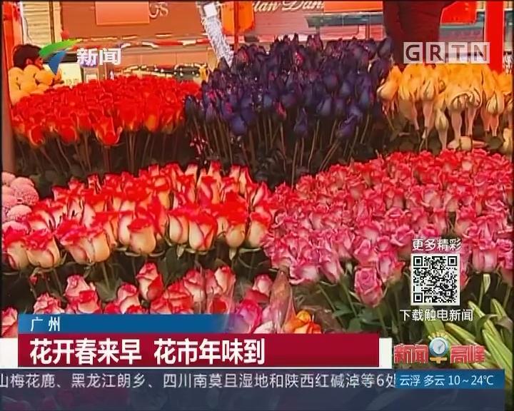 广州:花开春来早 花市年味到