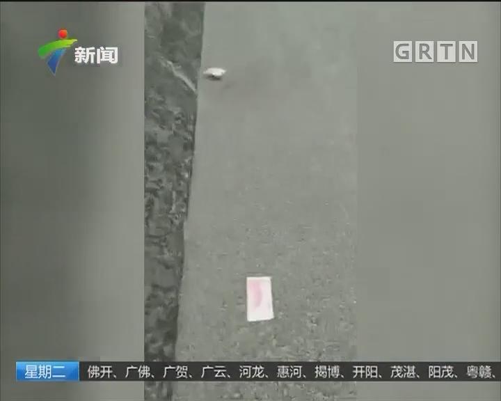 百元大钞散落高速 警方正积极寻找失主