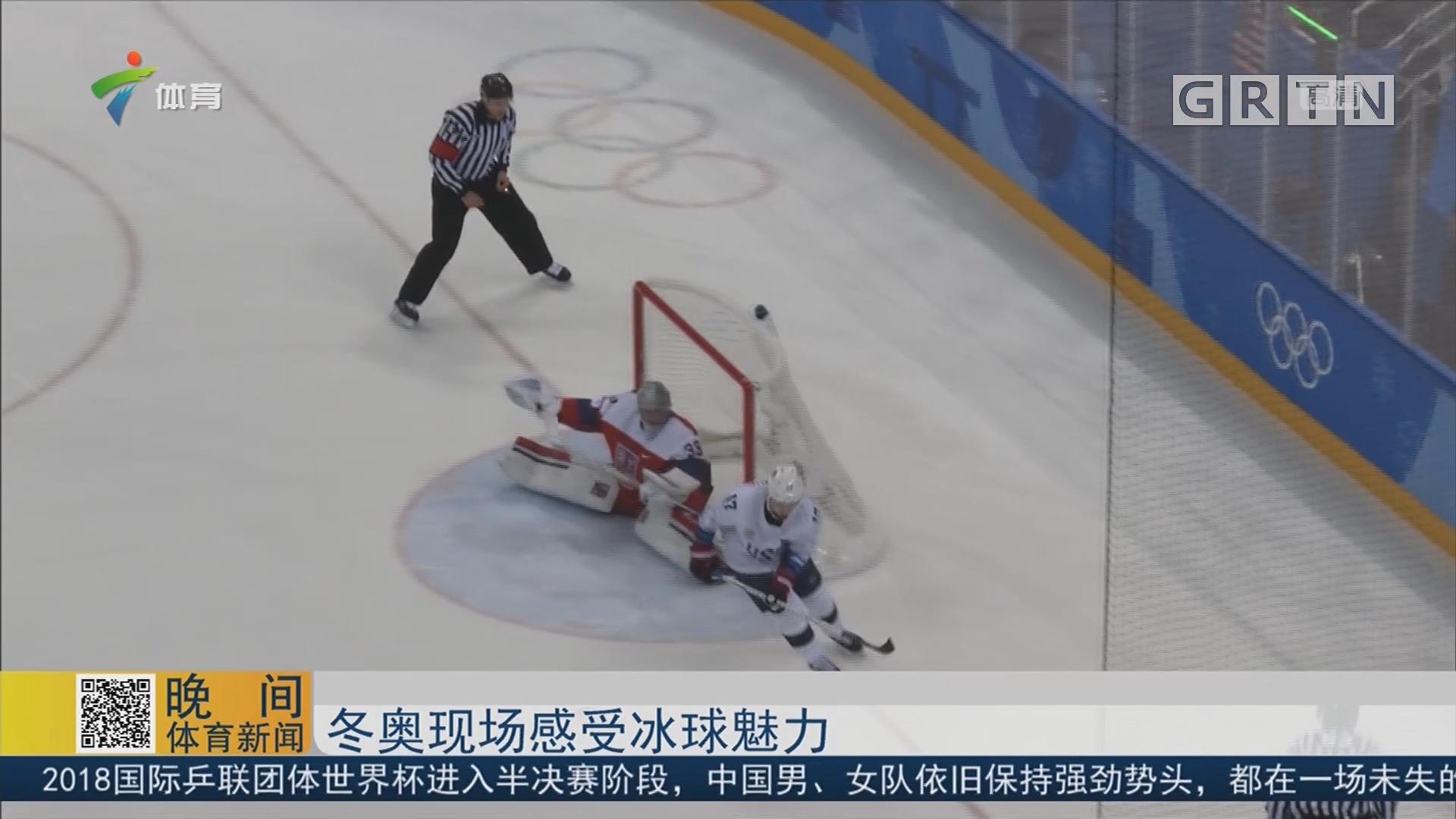 冬奥现场感受冰球魅力