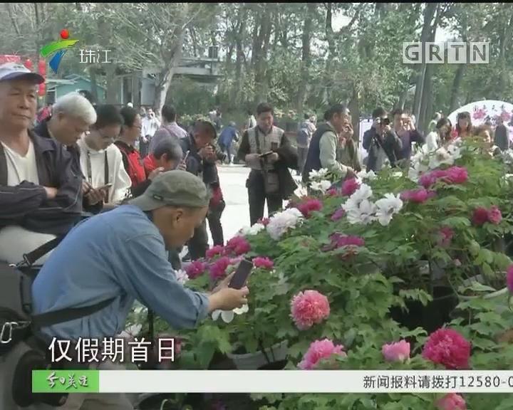 广东各地欢天喜地过大年