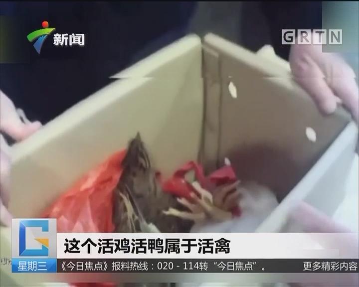 湖南:男子带活禽乘车被拘 现场杀鸡