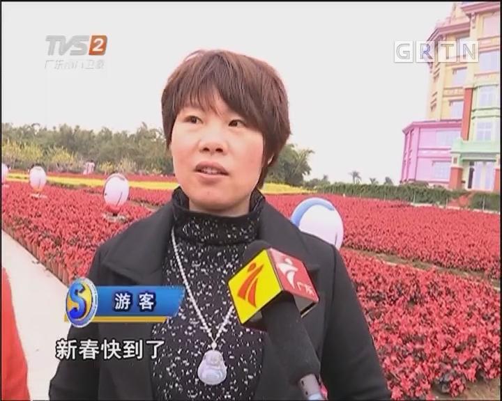 """赏花迎春好去处:去南沙领略""""红红火火"""""""
