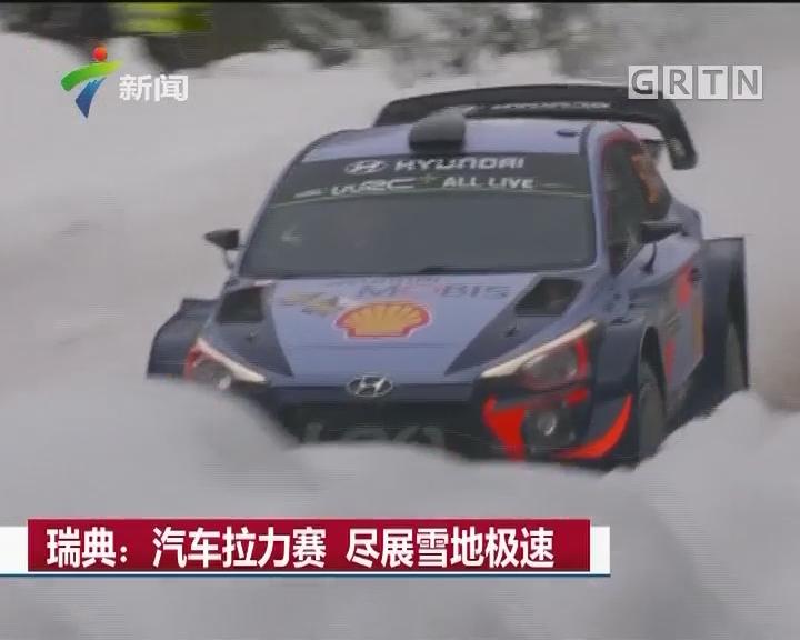 瑞典:汽车拉力赛 尽展雪地极速